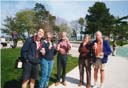 Ice Creams in Plymouth
